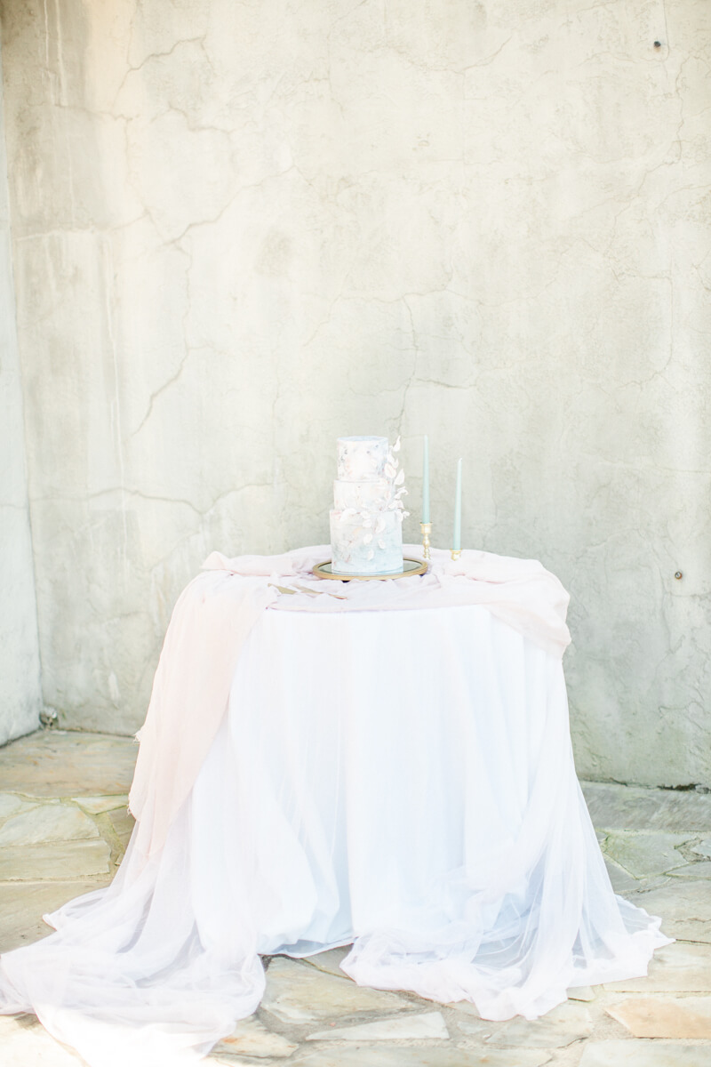 travelers-rest-sc-wedding-shoot-3.jpg