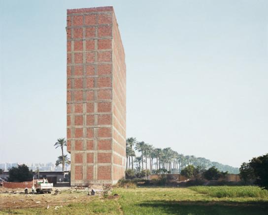 princen-14-sugarcane-field-cairo