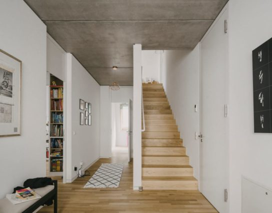 archaic_BarkowLeibinger_ApartmentHouse4-544x427.jpeg