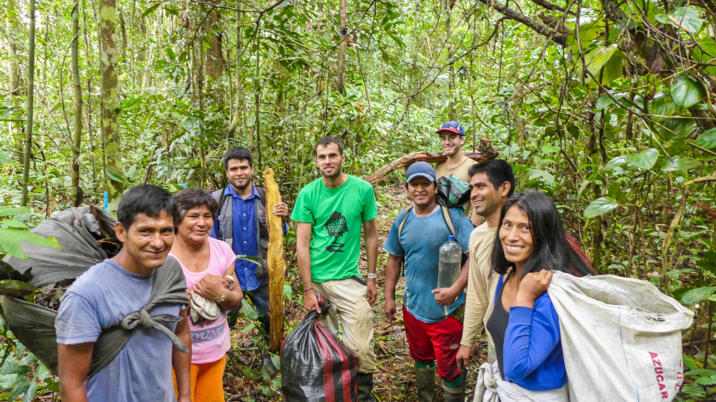 The Camino Verde team plus volunteers harvesting canelón branches and leaves in 2016.