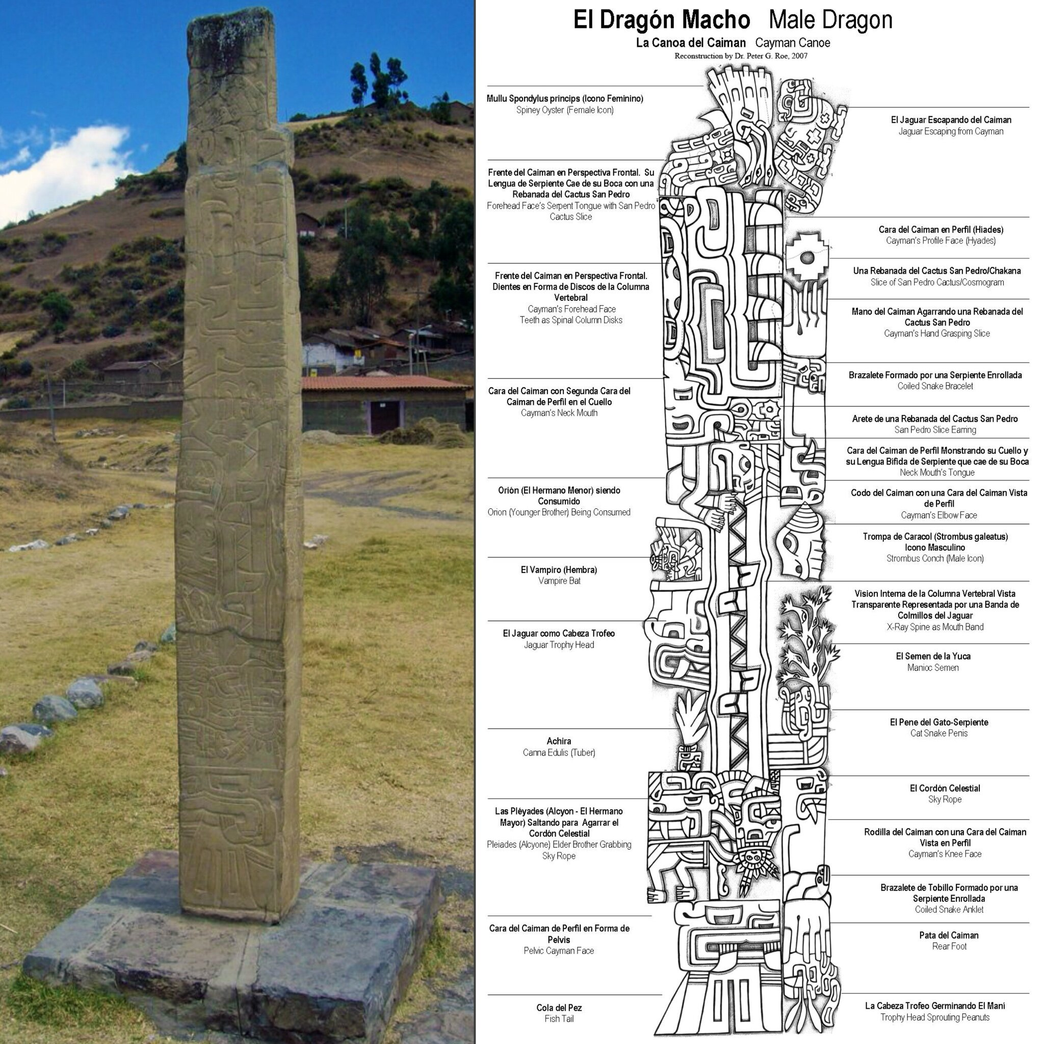 Peter Roe's interpretation of the Tello Obelisk at Chavin de Huantar includes mention of Amazonian species like the caiman, the jaguar, the vampire bat, and cassava. This, found at 3,180 m (10,430 ft.) above sea level.
