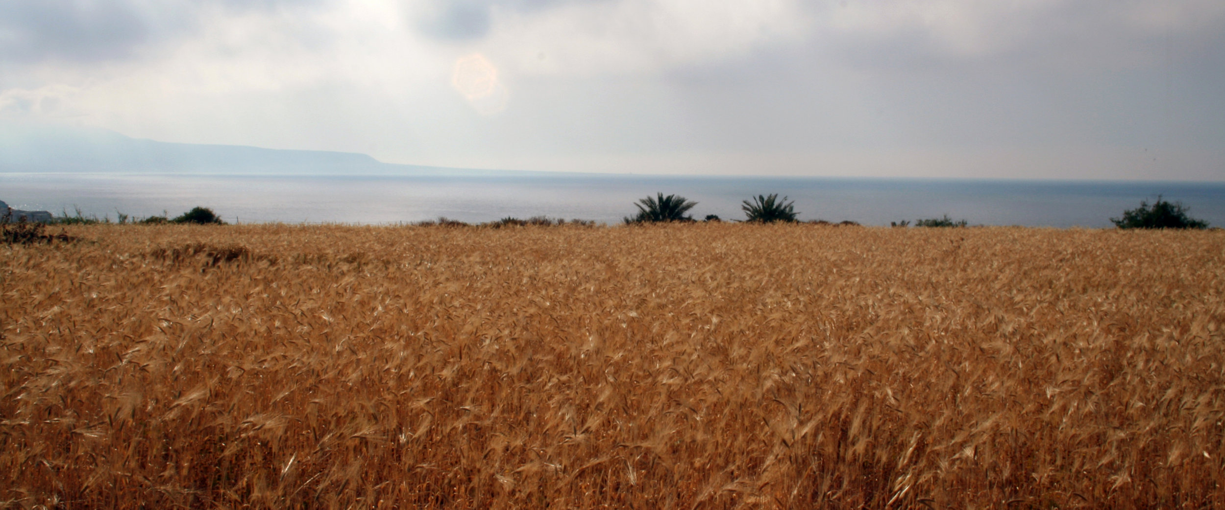 Jebel akhdar, libya (photo: Giulio lucarini)