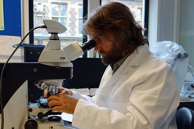 george pitt-rivers laboratory for bioarchaeology (photo: aude grazer ohara)