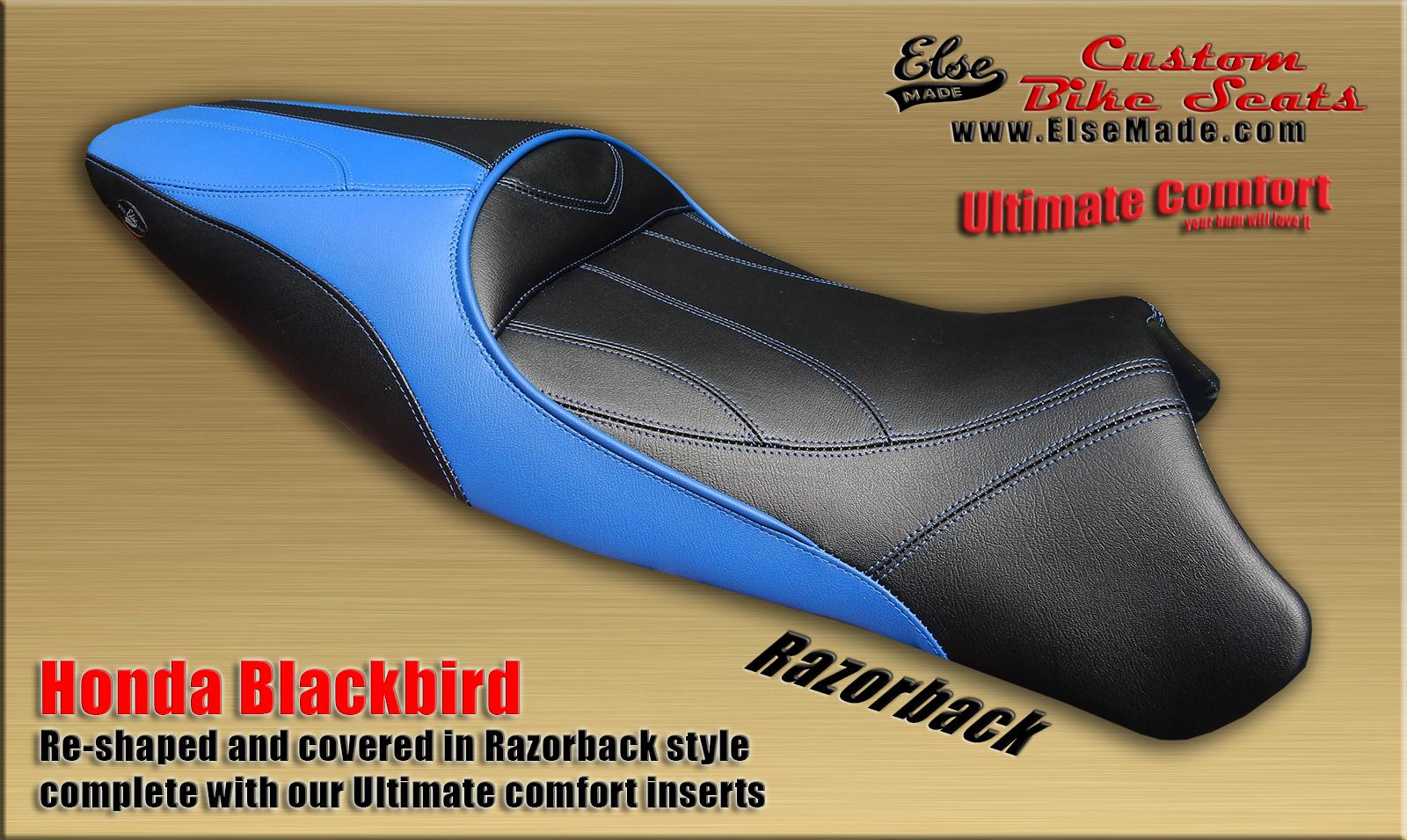 blackbird 11 full size 1600.jpg