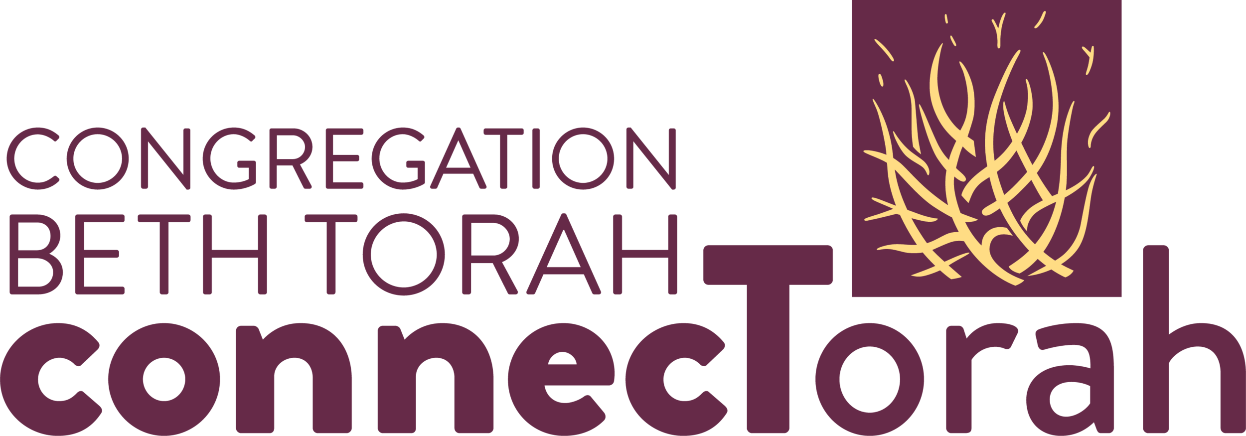Click here for YOUR next step to connecTorah for 5780!