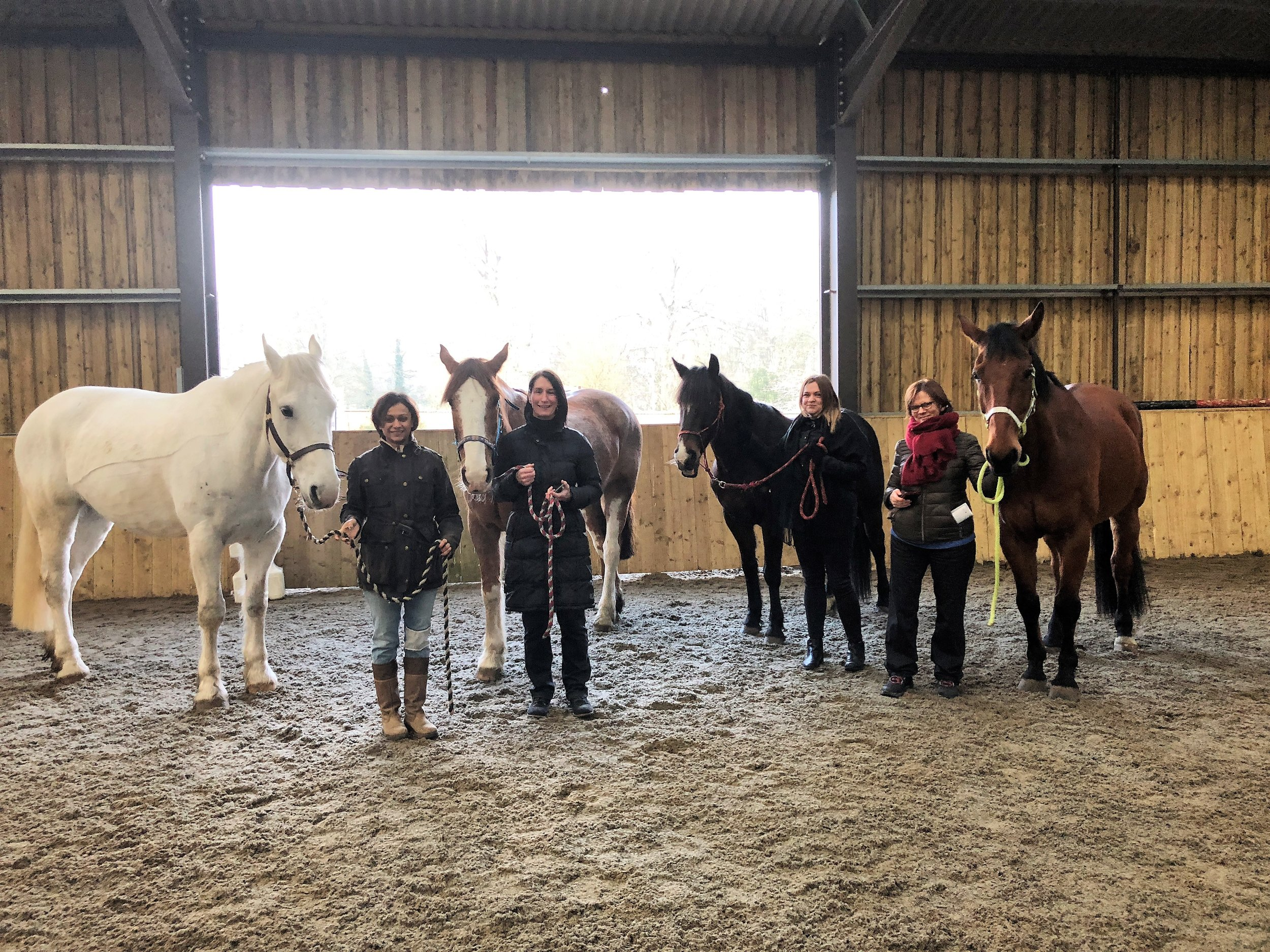 HorseDream Taster Salisbury with Petee, Dennis, Jester and Dylan, Tidworth Garrison Stables, UK