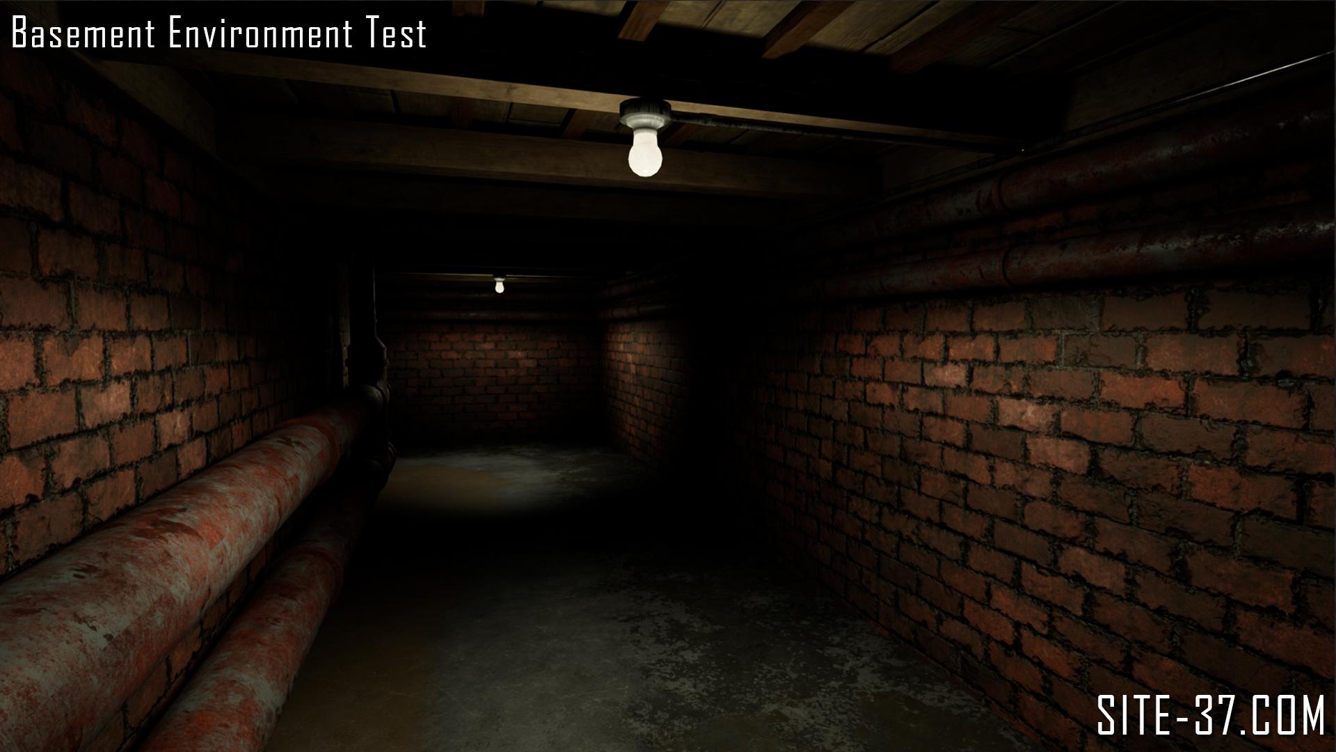 basementenvtest_003.jpg