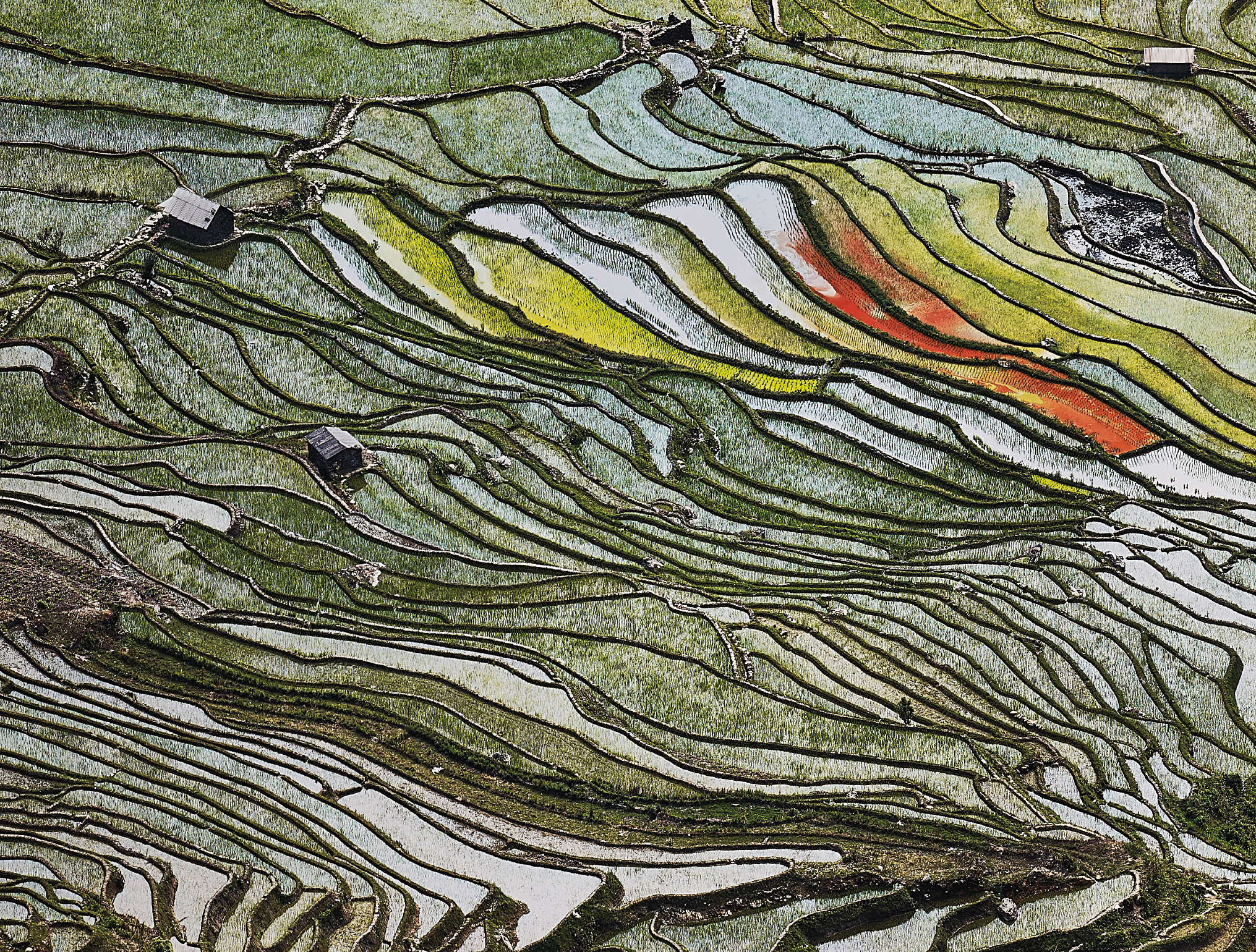 Edward Burtynsky | Rice Terraces #2, Western Yunnan Province, China, 2012 | Estimate: £10,000-15,000