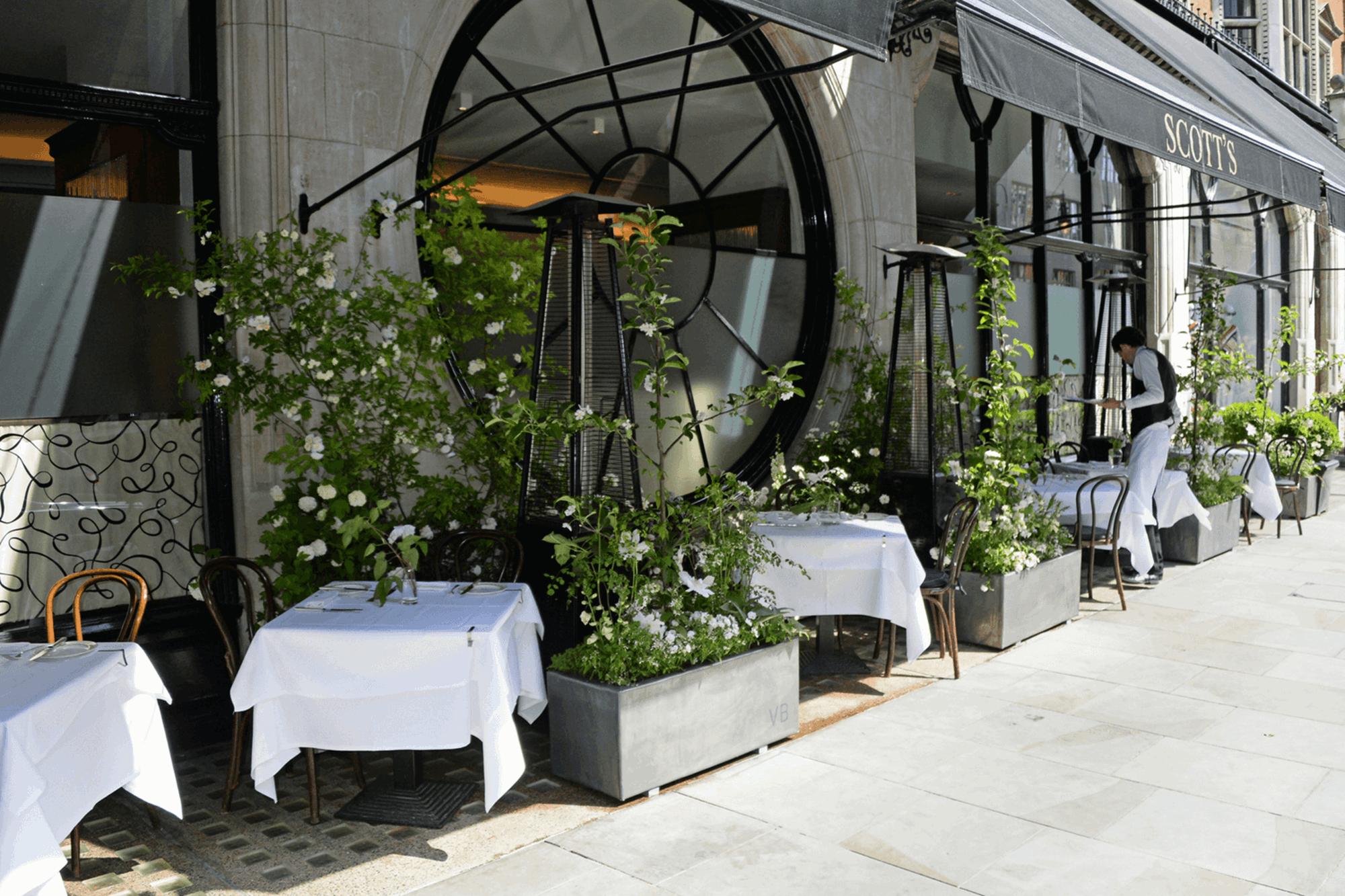 vb-terrace-3.png