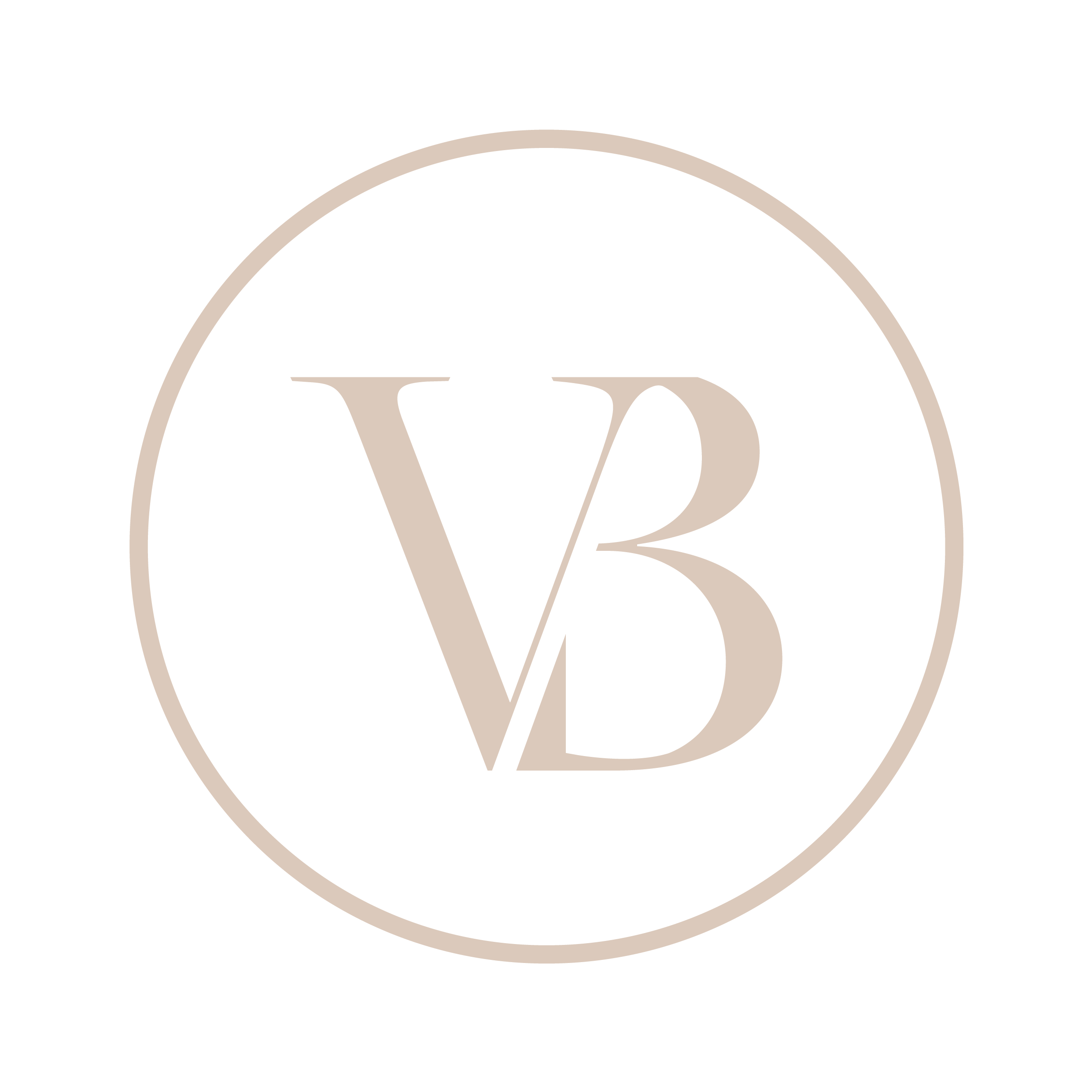 VirtuBrands - Final Logo - ICON (Clear Background)-06.png