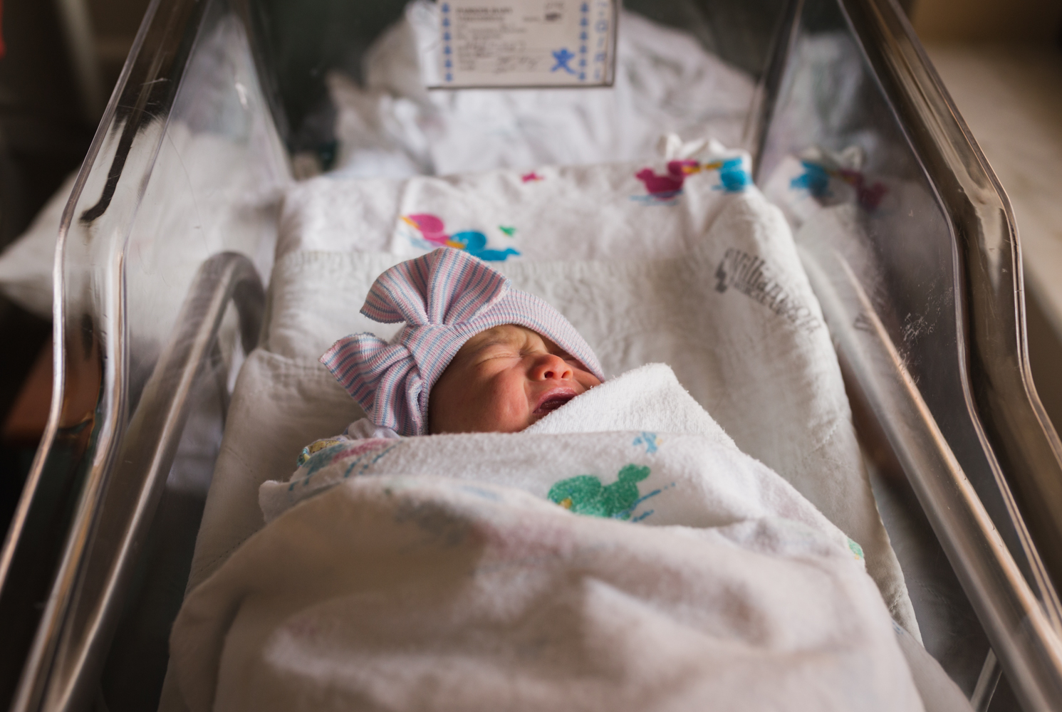 Birth Place / Fresh 48   - - 30-45 minutes at location of your baby's birth- For your immediate family- At least 25 high resolution images- $400 + TN sales tax
