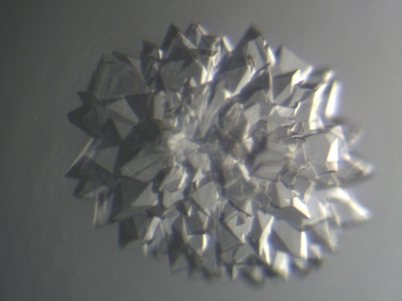 AM14Fab 2.jpg