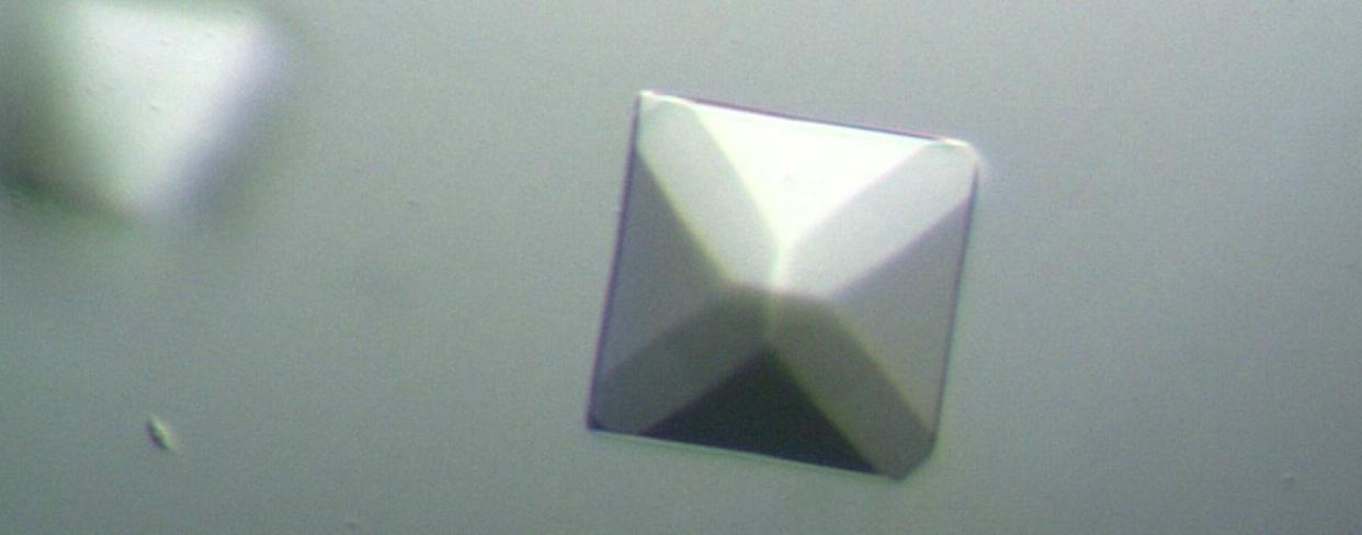 DSCav1 w 5401JSM.jpg