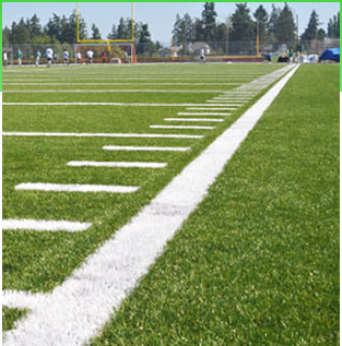 synthetic turf fields.jpg
