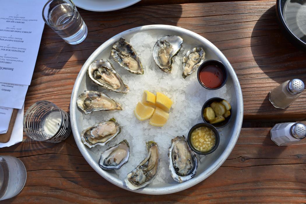 Netart oysters