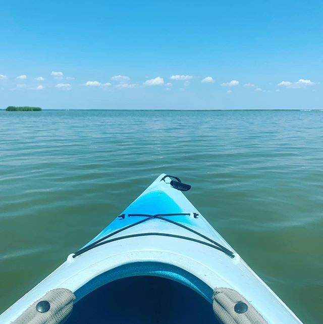 Kayaking will always be my favorite, especially in the Northern Neck of Virginia ✨ • There's something so freeing to me about being out on the water in a little boat. I feel one with nature and at peace on a beautiful, sunny day ☀️ • Do you have a favorite pastime or hobby? What makes you feel at peace? • 🍍 #apinchofpineapple