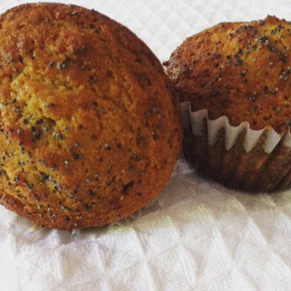 Lemon Poppy Muffin Recipe.jpg