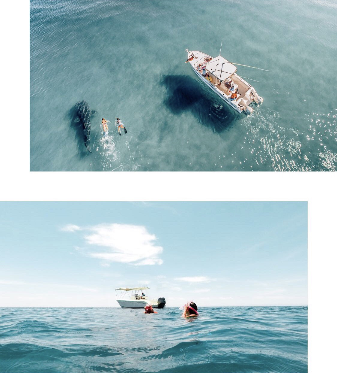 Top image: BACo Adventures