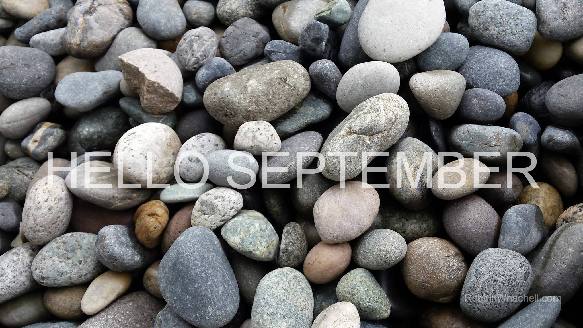 Hello-September-Whachell.jpg