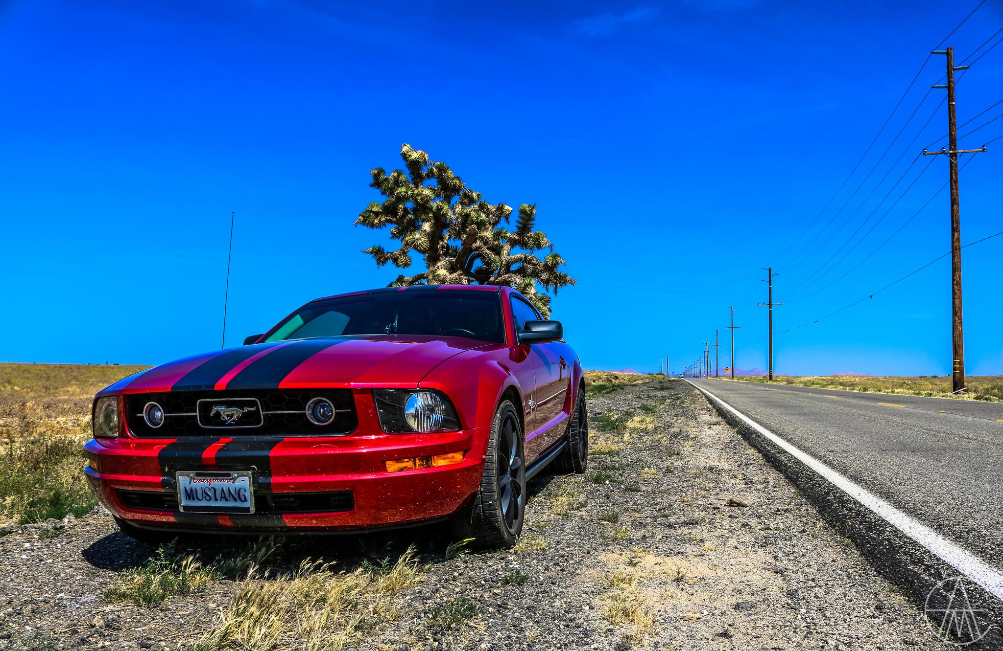 MustangDesertRoad_FACEBOOK.jpg