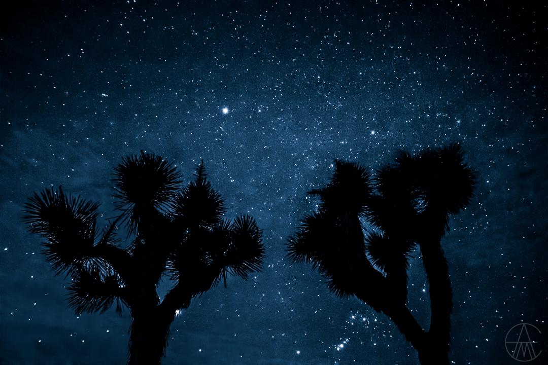 NightSky2-2698-2.jpg