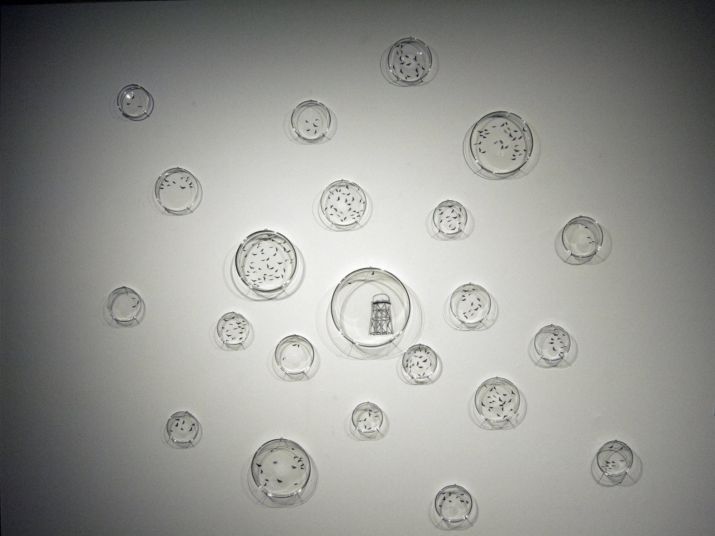 skystudy1.jpg