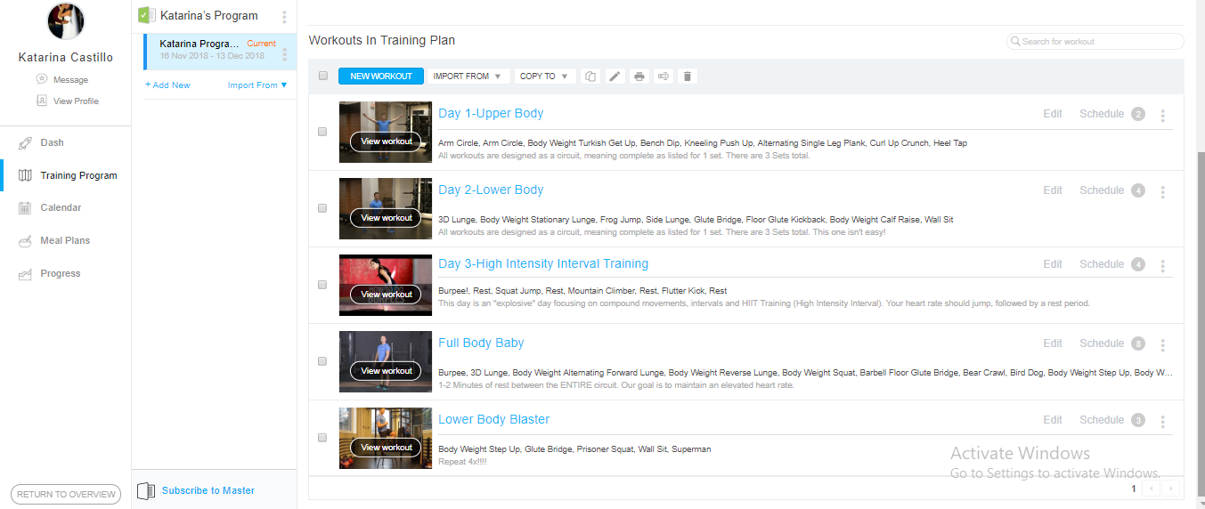 Sample Training Program for one of my clients.