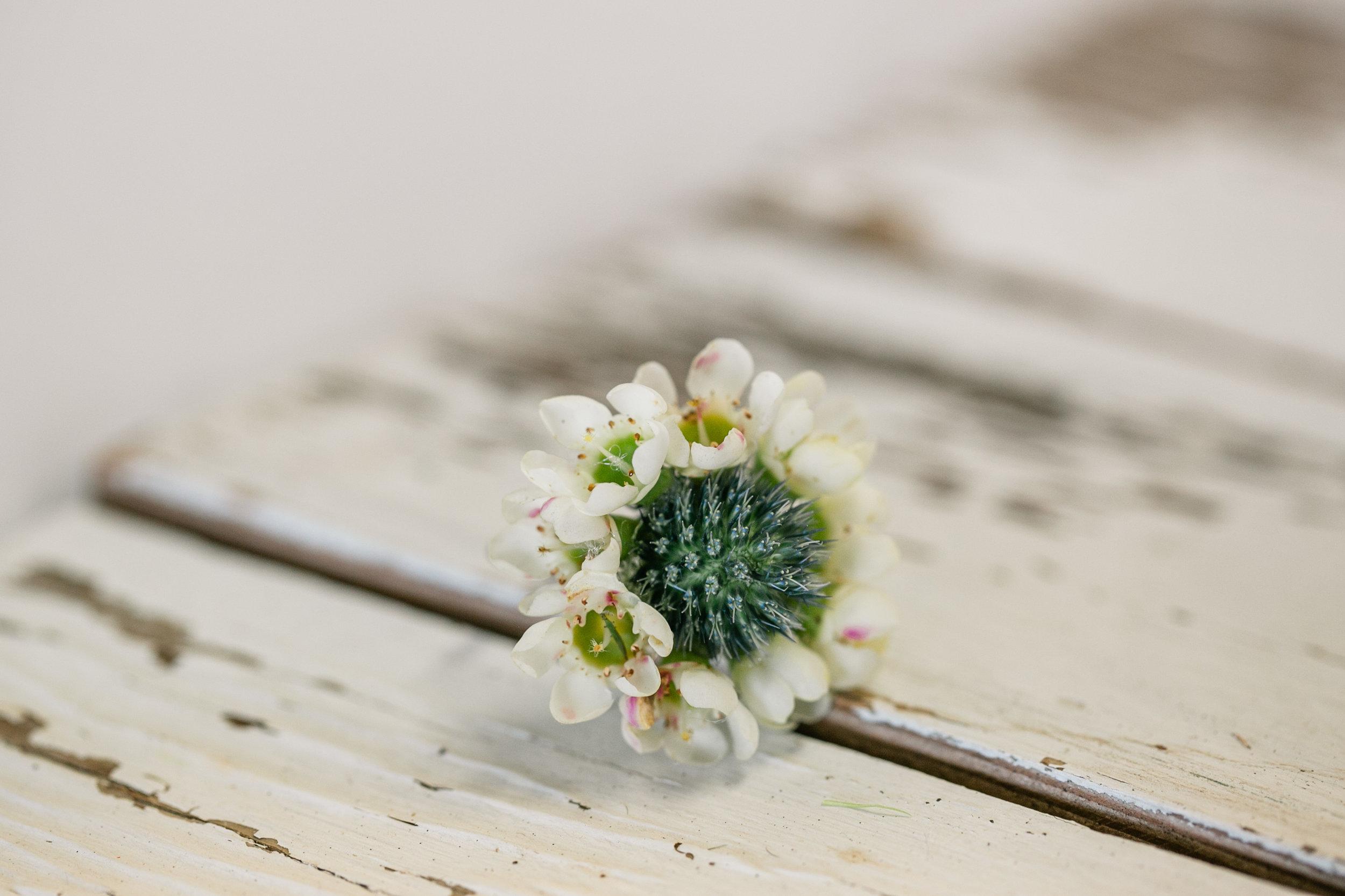 LAV-BLUE-des-moines-prom-flowers-26.jpg