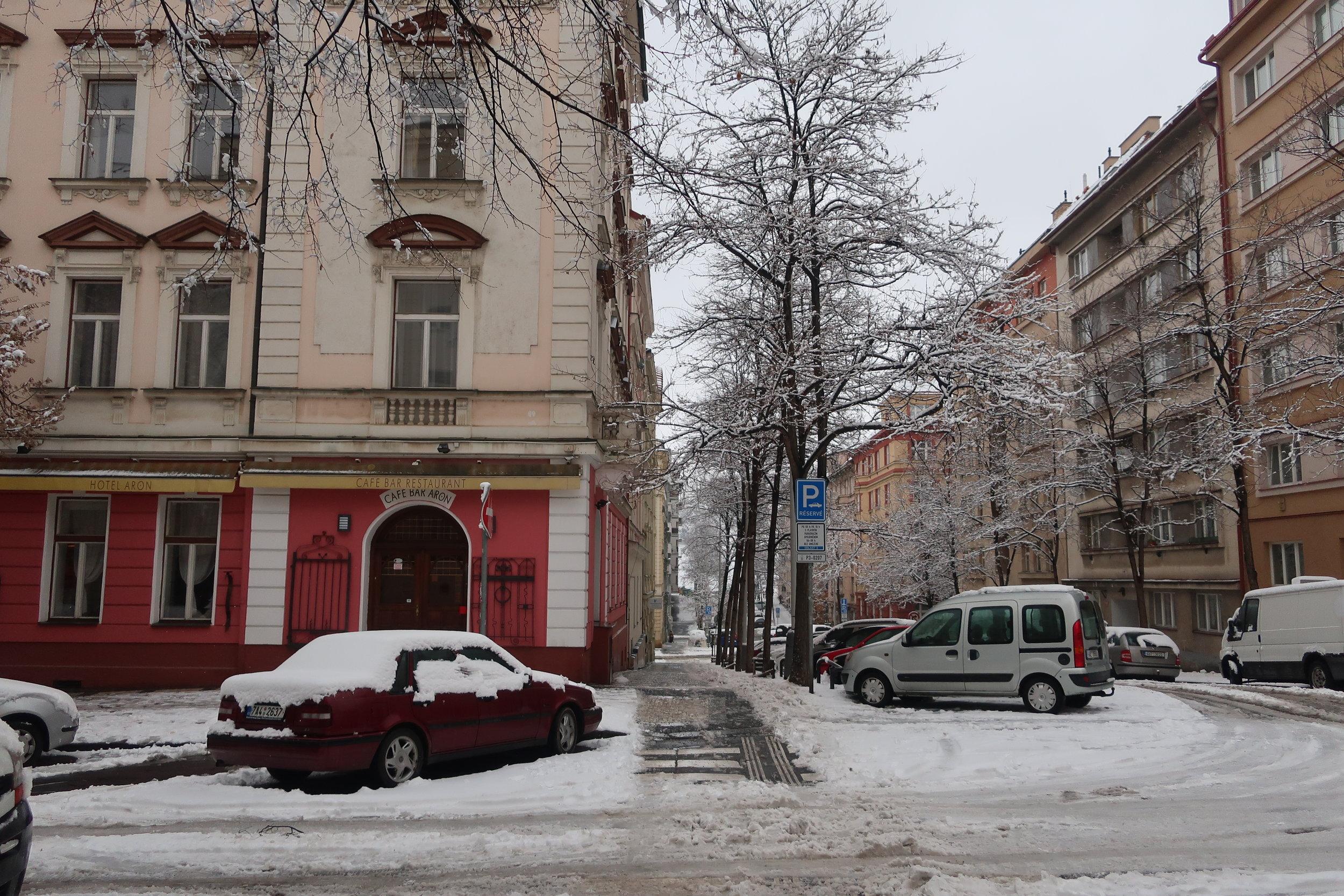 Snowy scene outside of CARP main headquarters