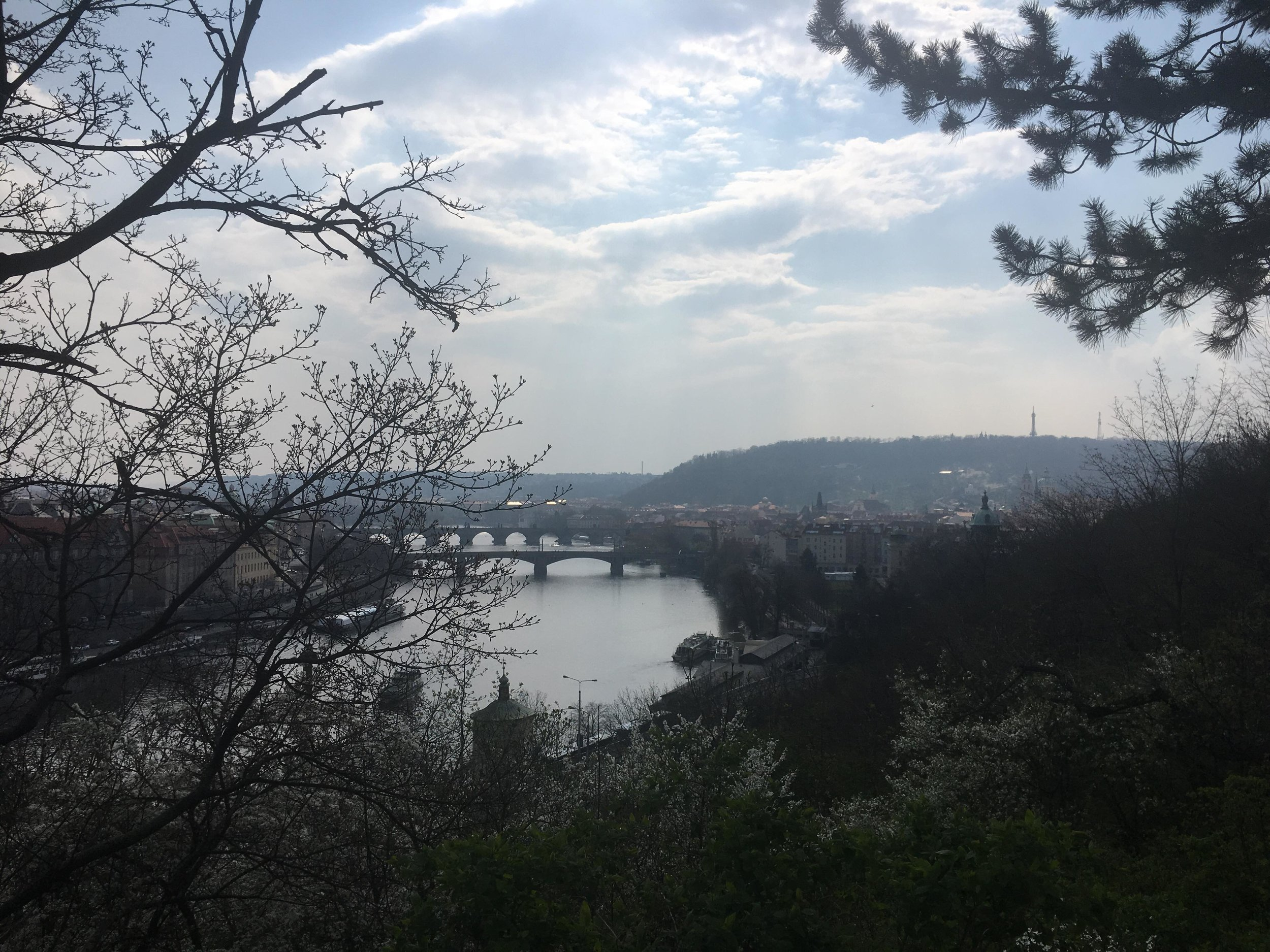 A view of Charles Bridge and the Vltava River from Latna Park