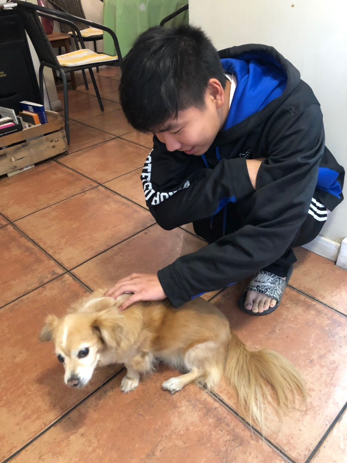Yasuhiro Ishiyama with Poofy/Puffy/Fluffy, the Grange Family's Friendly Dog