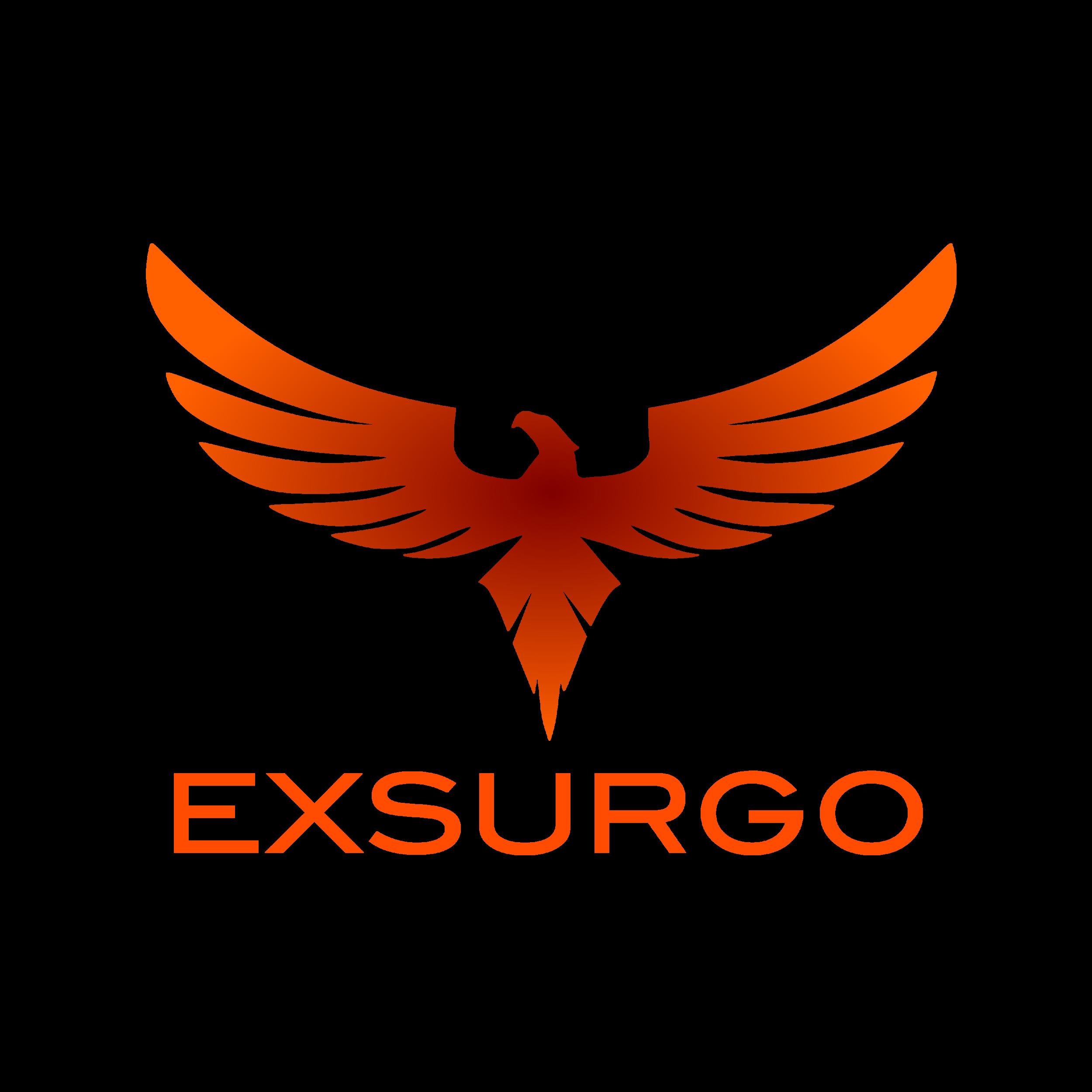 Exsurgo logo.png