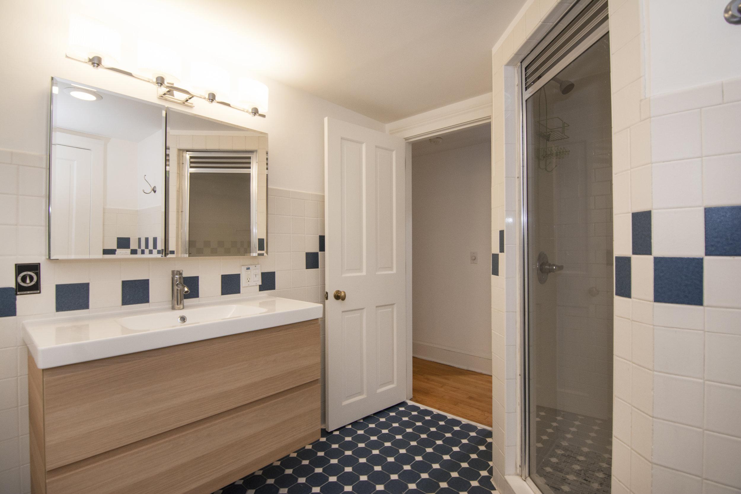331 Adelphi Street Full Bathroom.jpg
