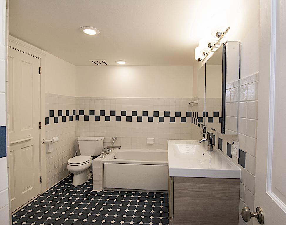 331 AdelphiStreet Master Bathroom Tub.jpg
