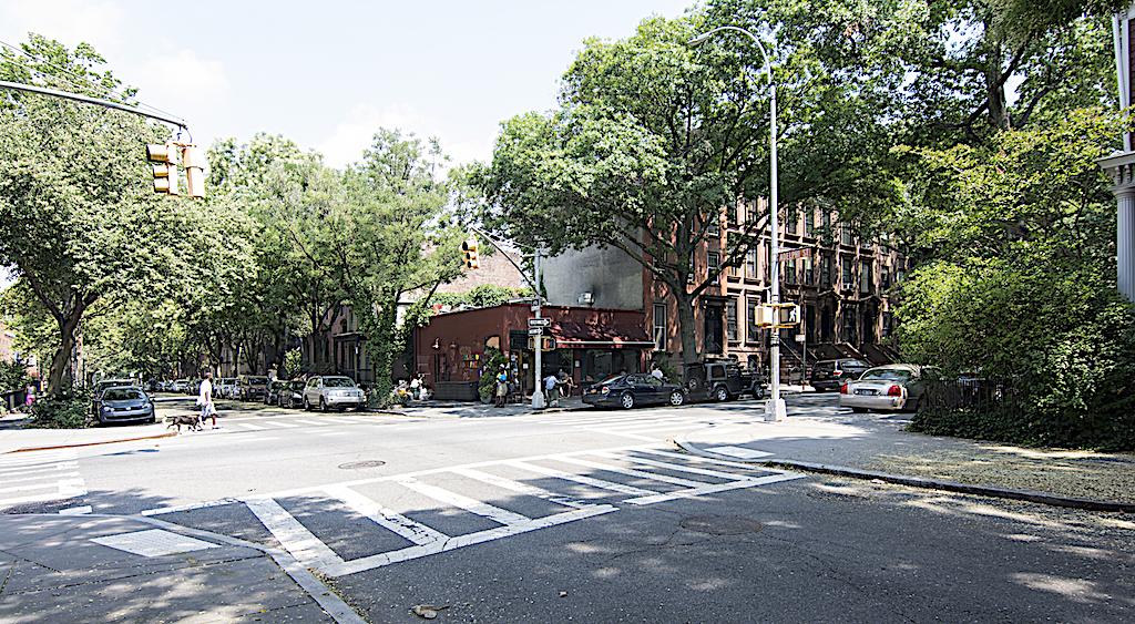 331 Adelphi Street Olea.jpg