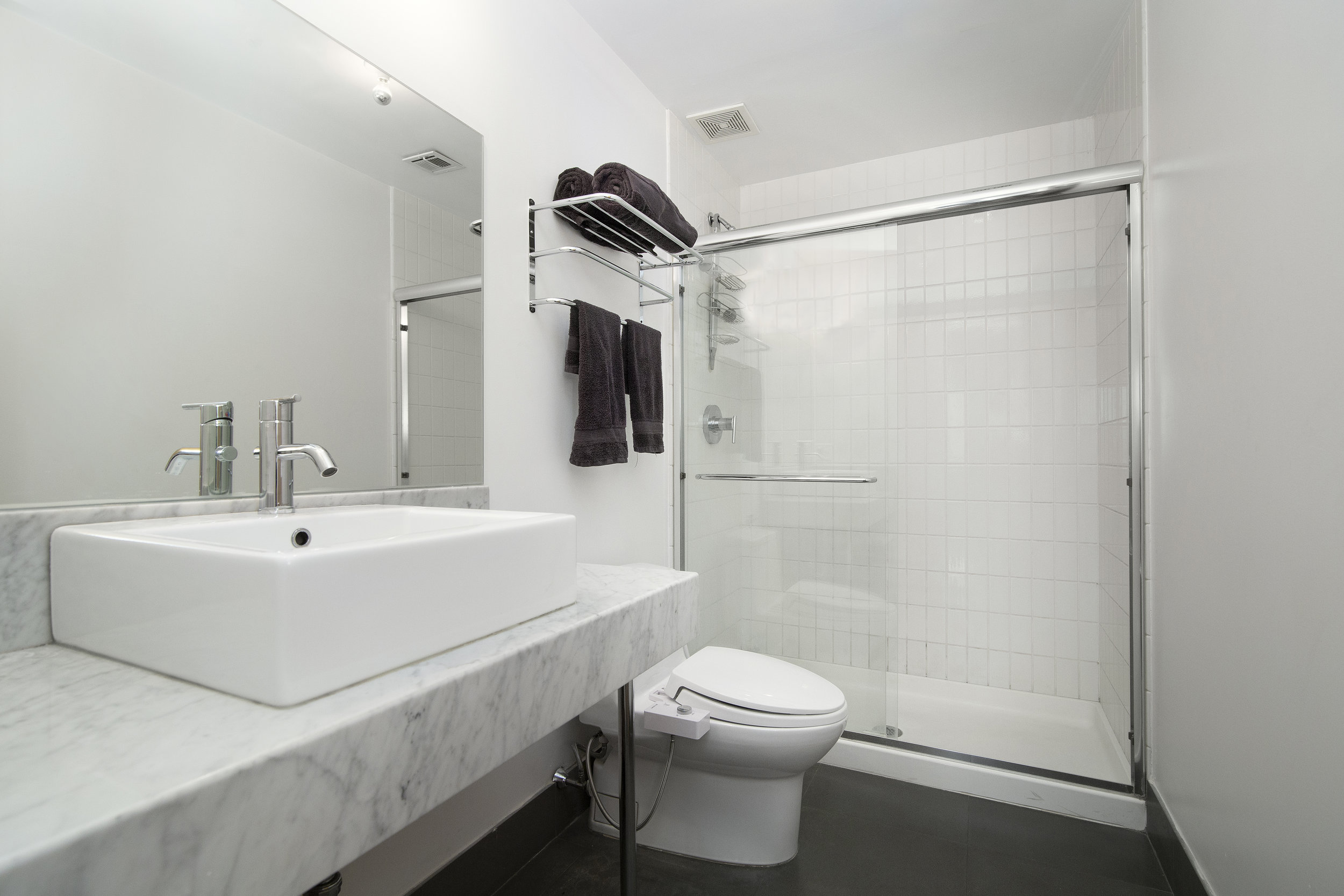 195 Spencer Street, BK NY master bathroom.jpg