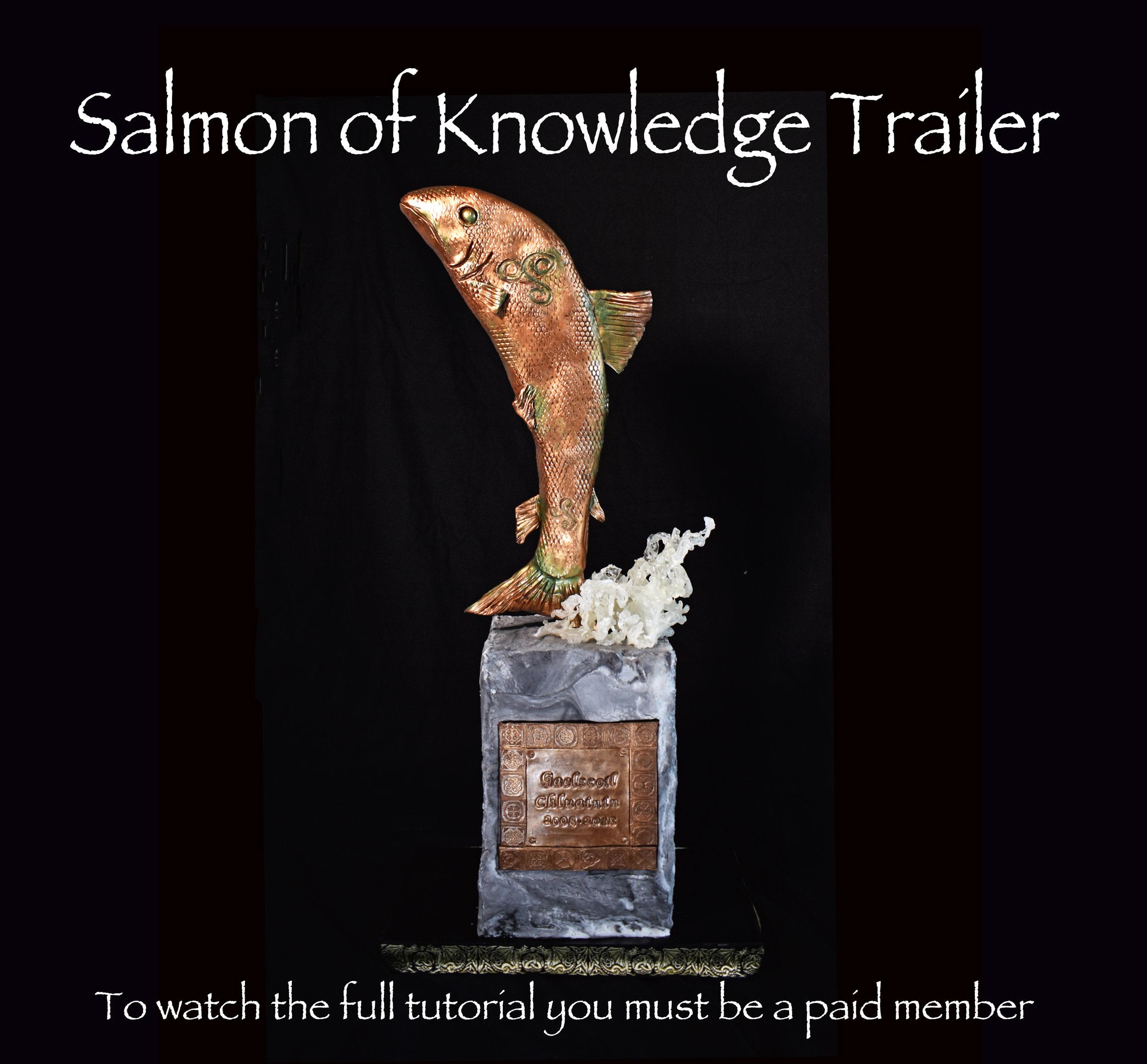SALMOn promo.jpg