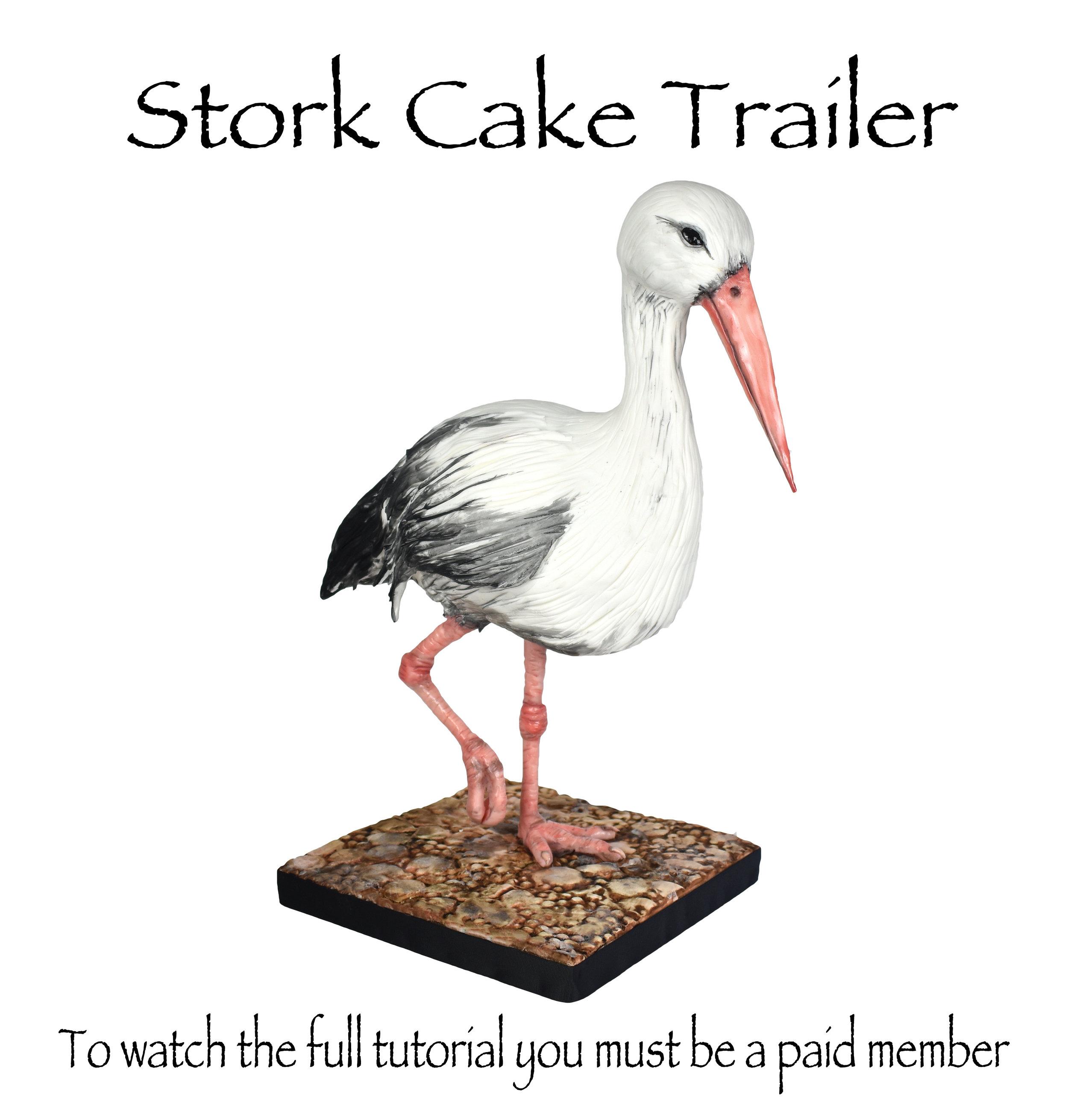 stork promo.jpg