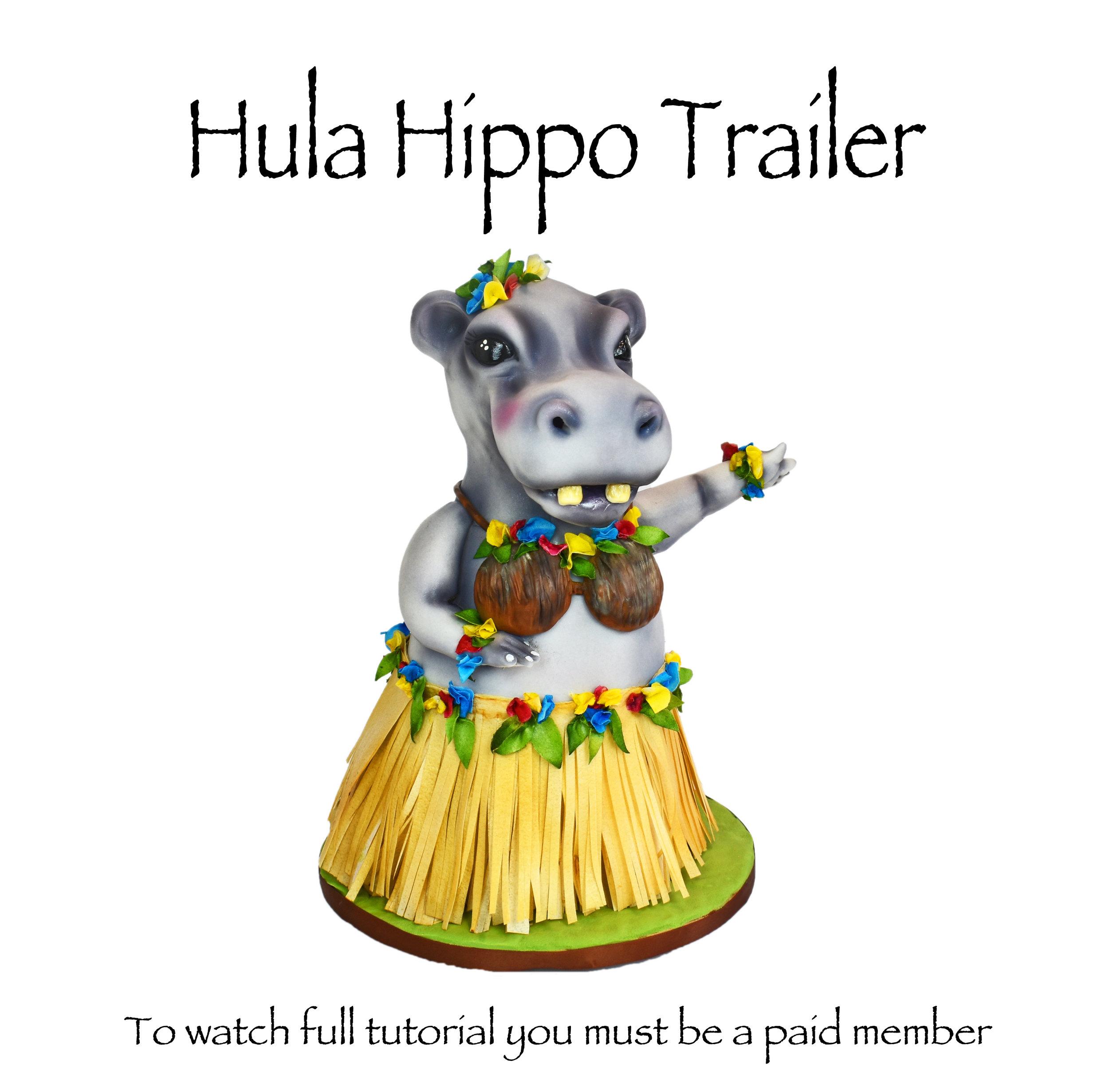 Hula Hippo promo.jpg