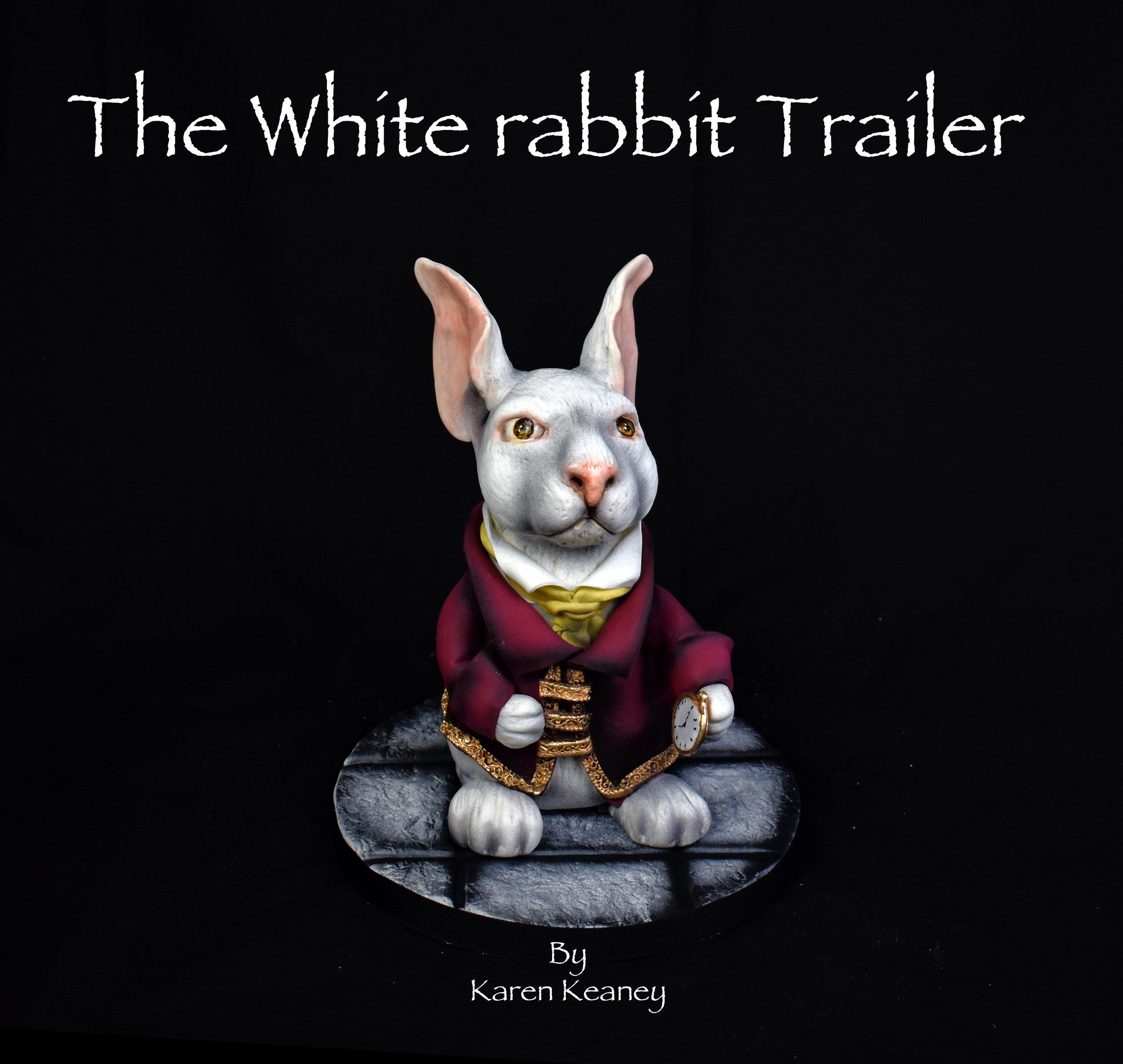THE WHITE RABBIT trailer poster.jpg