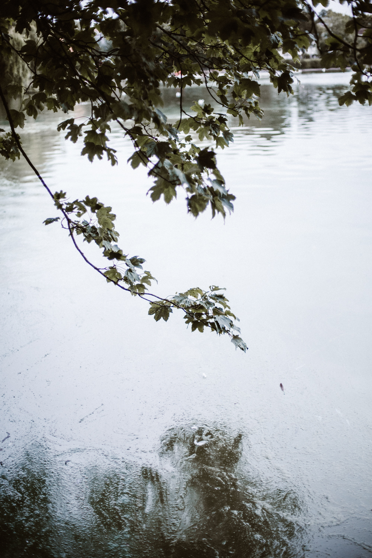 the uk by victoria elena-26.jpg