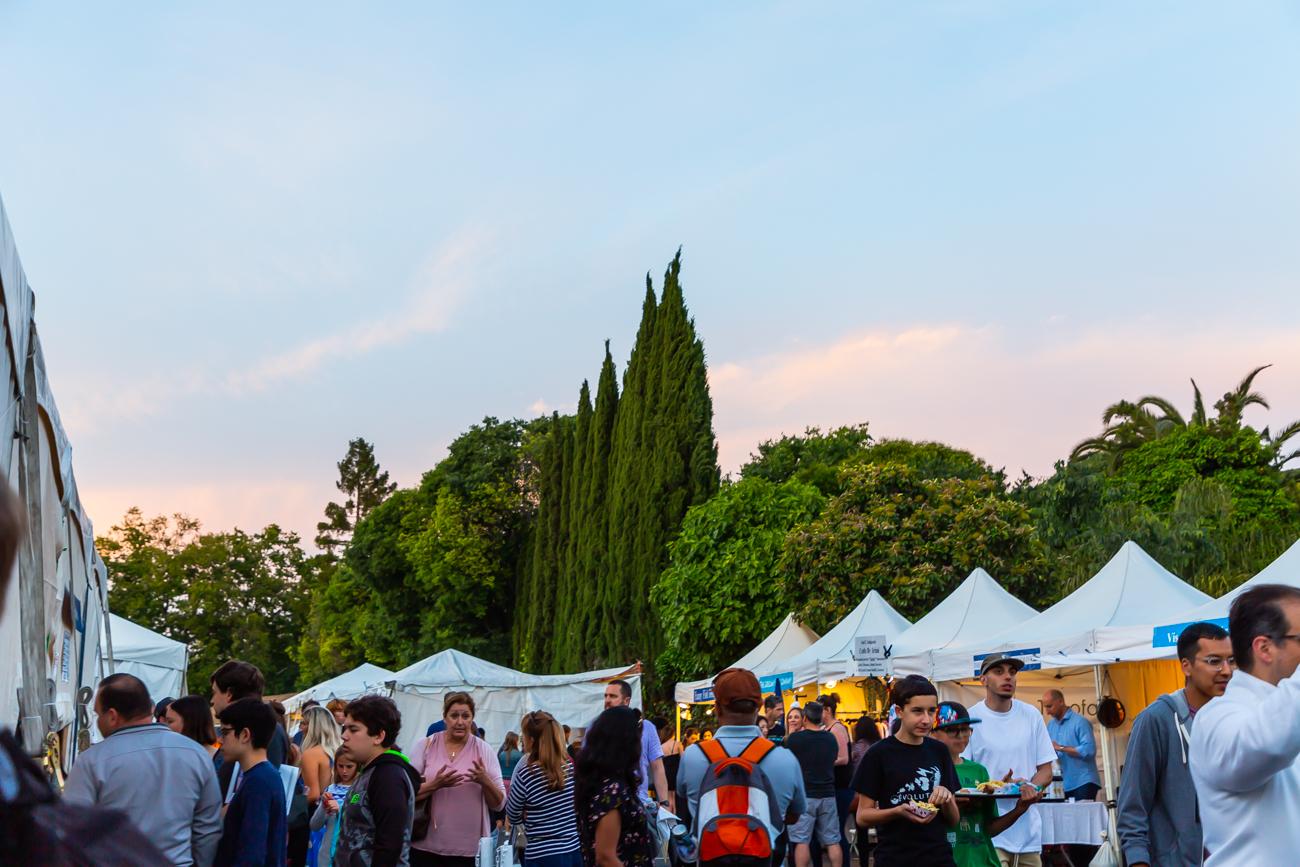 web resolution saturday and sunday greek festival photos by victoria smyrniotis-67.jpg
