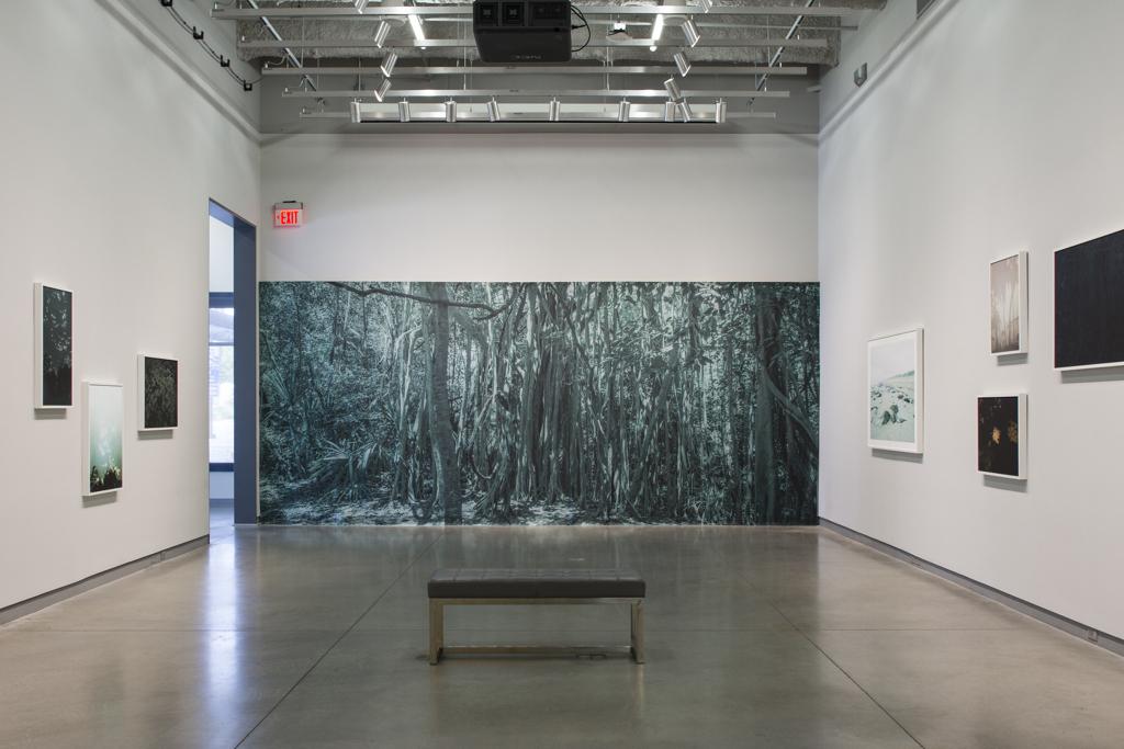 Paradise Wavering  (installation view)