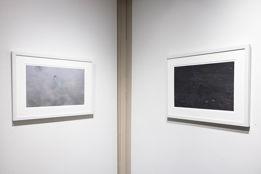 "Nancy Fewkes,  Site A, Spring Lake, 2.17  and  Site A, Spring Lake, 12.16 , archival digital ink jet print. These images face each other in the corner of the room. In ""Site A, Spring Lake, 2.17,"" the water is white and cloudy. In ""Site A, Spring Lake, 12.16,"" it is black with white speckles.Image courtesy of Lucas Stiegman."
