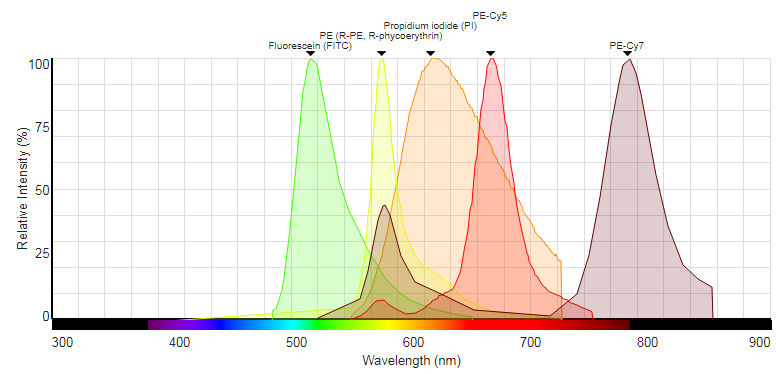 Propidium Iodide is a very useful dye, particularly in less fluormetrically complex assays, but in multicolour assays the broad emission profile of the dye can result in significant compensation problems across multiple channels.