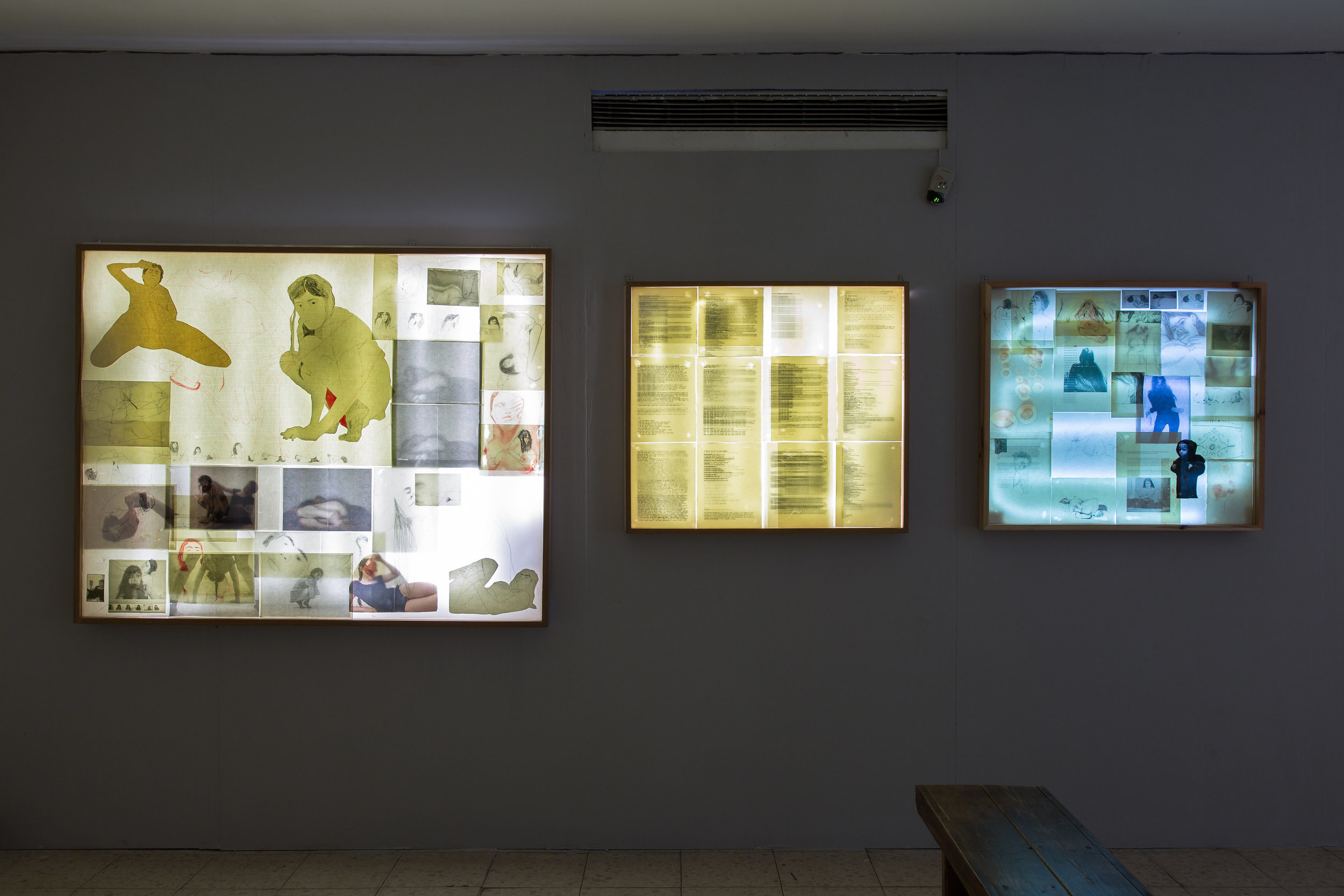 Installation view of Paper Skins (Light boxes)
