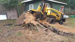 stump grinding.png