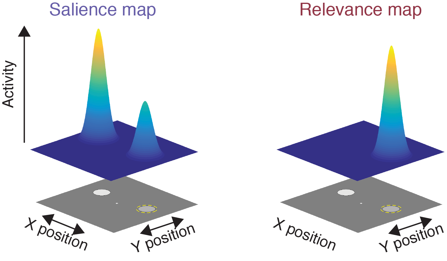 Cartoon depiction of how salience and relevance each impact priority maps