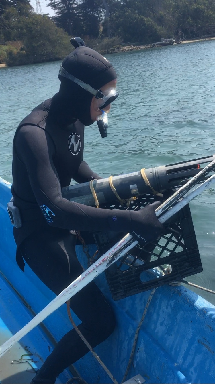 When the tide is high and we deploy these water quality instruments by free diving. All you need is a mask and a snorkel, and of course a wet suit. 58 degree water is no joke. #freediving #waterquality