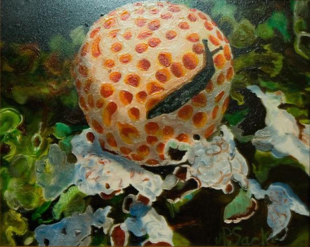 Fungus Amongus, Oil, 8Hx10W, $295, Framed